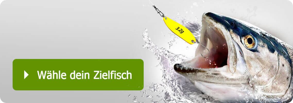 Sortimente für spezielle Zielfische