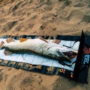 Zeck Fishing Unhooking Ruler