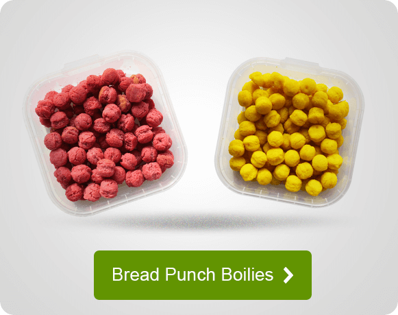 Bread Punch Boilies für Angler