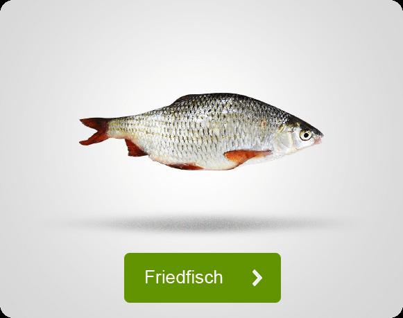 Angebote für das Angeln auf Friedfisch
