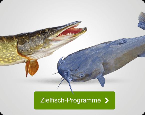Spezielle Sortimente für bestimmte Zielfische beim Angeln