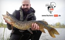 Fischers Gold